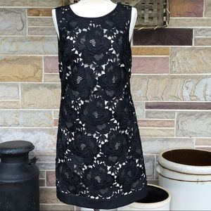 WHBM Lace Overlay Dress